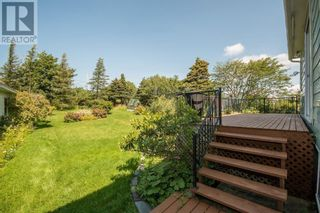 Photo 9: 298 Blackmarsh Road in St. John's: Other for sale : MLS®# 1237327