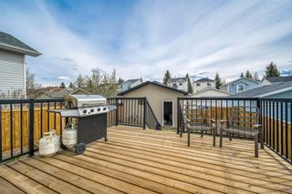 Photo 22: 217 Mount Allan Circle SE in Calgary: McKenzie Lake Detached for sale : MLS®# A1102735