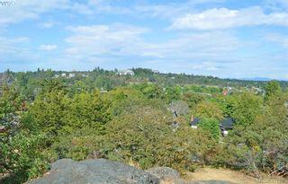 Photo 40: 1335 Franklin Terr in VICTORIA: Vi Fairfield East House for sale (Victoria)  : MLS®# 816382