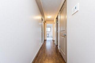 Photo 9: 204 7111 80 Avenue in Edmonton: Zone 17 Condo for sale : MLS®# E4256387