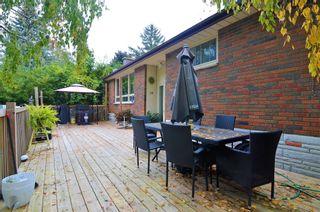 Photo 8: 19 Hope Street: Brighton House (Bungalow-Raised) for sale : MLS®# X5393988