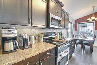 Photo 16: 9519 208 Street in Edmonton: Zone 58 House for sale : MLS®# E4241415