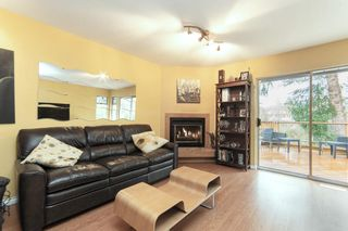 """Photo 13: 7874 143A Street in Surrey: East Newton House for sale in """"Springhill"""" : MLS®# R2554055"""
