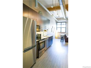 Photo 3: 133 Market Avenue in Winnipeg: Central Winnipeg Condominium for sale : MLS®# 1609413