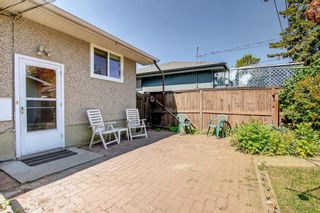 Photo 29: 2618 46 Street SE in Calgary: Forest Lawn Detached for sale : MLS®# A1146875