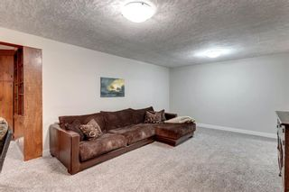 Photo 27: 10408 Fairmount Drive SE in Calgary: Willow Park Detached for sale : MLS®# A1066114