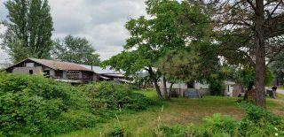 Photo 3: 20048 WHARF Street in Maple Ridge: Southwest Maple Ridge House for sale : MLS®# R2618850