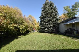 Photo 6: 319 MADDOCK Avenue in West St Paul: Residential for sale (4E)  : MLS®# 202124027