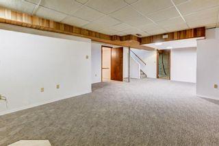 Photo 22: 5619 Madigan Drive NE in Calgary: Marlborough Park Detached for sale : MLS®# A1092723