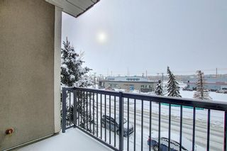 Photo 26: 222 15304 BANNISTER Road SE in Calgary: Midnapore Apartment for sale : MLS®# A1066486