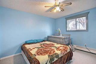 Photo 25: 110 11 Dover Point SE in Calgary: Dover Apartment for sale : MLS®# A1096781