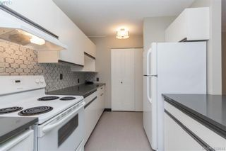 Photo 16: 305 420 Parry St in VICTORIA: Vi James Bay Condo for sale (Victoria)  : MLS®# 828944