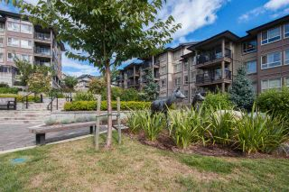 "Photo 15: 217 3178 DAYANEE SPRINGS BL in Coquitlam: Westwood Plateau Condo for sale in ""DAYANEE SPRINGS BY POLYGON"" : MLS®# R2107496"