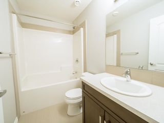 Photo 42: 5215 ADMIRAL WALTER HOSE Street in Edmonton: Zone 27 House for sale : MLS®# E4260055