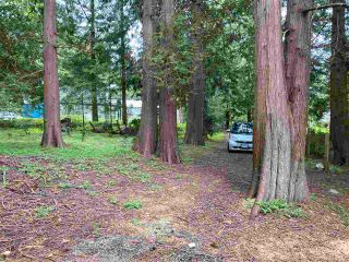 Photo 6: LOT 19 FAWN Road in Halfmoon Bay: Halfmn Bay Secret Cv Redroofs Land for sale (Sunshine Coast)  : MLS®# R2580895