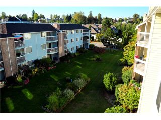 Photo 3: # 309 22514 116TH AV in Maple Ridge: East Central Condo for sale : MLS®# V1041669