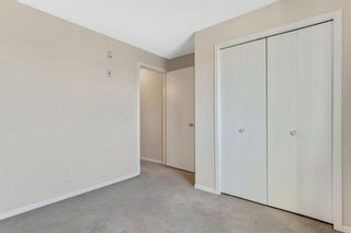 Photo 21: 328 1717 60 Street SE in Calgary: Red Carpet Apartment for sale : MLS®# A1090437
