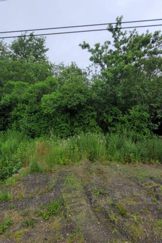 Photo 10: Lot NO 217 Highway in Roxville: 401-Digby County Vacant Land for sale (Annapolis Valley)  : MLS®# 202115919