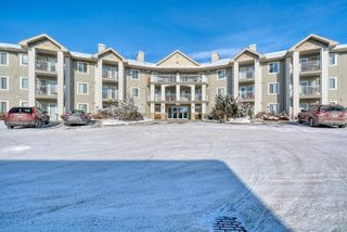Main Photo: 3117 6818 Pinecliff Grove NE in Calgary: Pineridge Apartment for sale : MLS®# A1069420