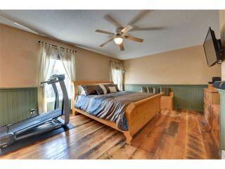 Photo 21: 83 MT SELKIRK Close SE in Calgary: McKenzie Lake House for sale : MLS®# C4066159