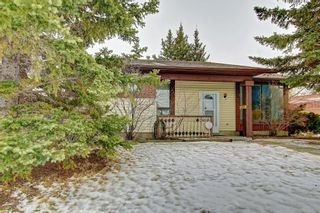 Photo 2: 2141 SUMMERFIELD Boulevard SE: Airdrie Detached for sale : MLS®# A1100597
