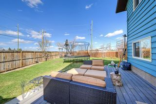 Photo 46: 420 Templeby Place NE in Calgary: Temple Detached for sale : MLS®# A1107183