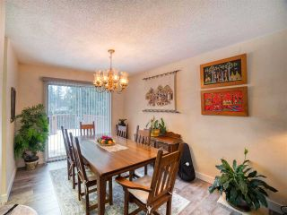 Photo 15: 20073 42 Avenue in Langley: Brookswood Langley House for sale : MLS®# R2538938