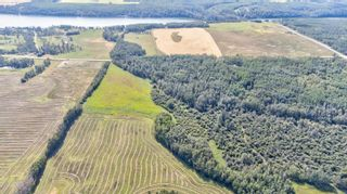 Photo 7: rr 273 twp 481: Rural Leduc County Rural Land/Vacant Lot for sale : MLS®# E4236709