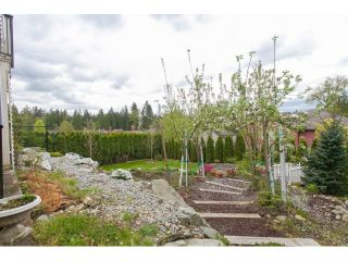 Photo 2: 13391 BALSAM Street in Maple Ridge: Silver Valley House for sale : MLS®# R2056269