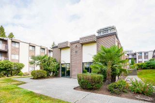 """Photo 31: 104 3921 CARRIGAN Court in Burnaby: Government Road Condo for sale in """"LOUGHEED ESTATES"""" (Burnaby North)  : MLS®# R2540449"""