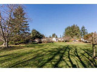 Photo 4: 16910 23RD Avenue in Surrey: Pacific Douglas House for sale (South Surrey White Rock)  : MLS®# R2136702