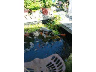 Photo 16: 8041 12TH AV in Burnaby: East Burnaby House for sale (Burnaby East)  : MLS®# V1101813