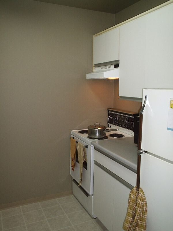 """Photo 8: Photos: 204 975 E BROADWAY ST in Vancouver: Mount Pleasant VE Condo for sale in """"SPARWOOD"""" (Vancouver East)  : MLS®# V613990"""