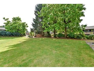 Photo 28: 126 34909 OLD YALE Road in Abbotsford: Abbotsford East Townhouse for sale : MLS®# R2486018