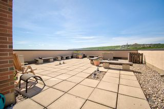 Photo 19: 311 8604 48 Avenue NW in Calgary: Bowness Apartment for sale : MLS®# A1113873