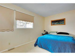 Photo 16: 1399 BERKLEY Drive NW in Calgary: Beddington Heights House for sale