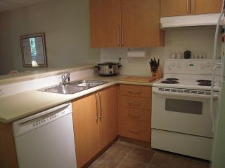 """Photo 1: 258 1100 E 29TH Street in North Vancouver: Lynn Valley Condo for sale in """"Highgate"""" : MLS®# V844994"""