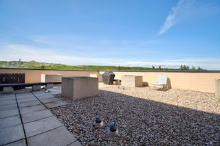 Photo 17: 311 8604 48 Avenue NW in Calgary: Bowness Apartment for sale : MLS®# A1113873