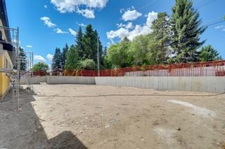 Photo 41: 10 LAURIER Place in Edmonton: Zone 10 House for sale : MLS®# E4233660