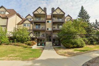 Photo 22: 4041 TUDOR Glen: St. Albert Condo for sale : MLS®# E4257399