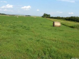 Photo 7: LSD 3,4,6,6 SW 06-47-16 W3rd in Meota: Lot/Land for sale (Meota Rm No.468)  : MLS®# SK860283