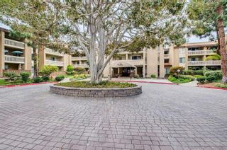 Photo 4: PACIFIC BEACH Condo for rent : 1 bedrooms : 1885 Diamond St. #116 in San Diego