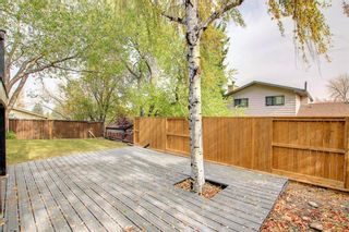 Photo 38: 68 Bermondsey Way NW in Calgary: Beddington Heights Detached for sale : MLS®# A1152009