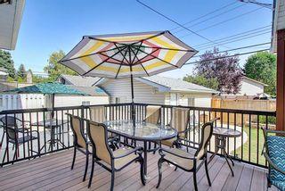 Photo 48: 1015 Maplecroft Road SE in Calgary: Maple Ridge Detached for sale : MLS®# A1139201