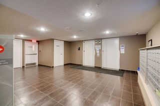 Photo 24: 2424 115 PRESTWICK Villas SE in Calgary: McKenzie Towne Apartment for sale : MLS®# A1095465