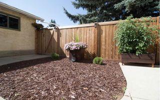 Photo 48: 3509 105 Street Street NW in Edmonton: Zone 16 House for sale : MLS®# E4239908
