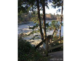 Photo 20: 4021 Hessington Pl in VICTORIA: SE Arbutus House for sale (Saanich East)  : MLS®# 693379