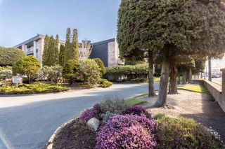 "Photo 40: 319 7631 STEVESTON Highway in Richmond: Broadmoor Condo for sale in ""ADMIRAL'S WALK"" : MLS®# R2562146"