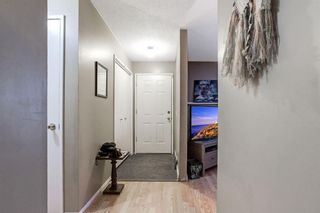 Photo 3: 255 Maitland Crescent NE in Calgary: Marlborough Park Detached for sale : MLS®# A1061446