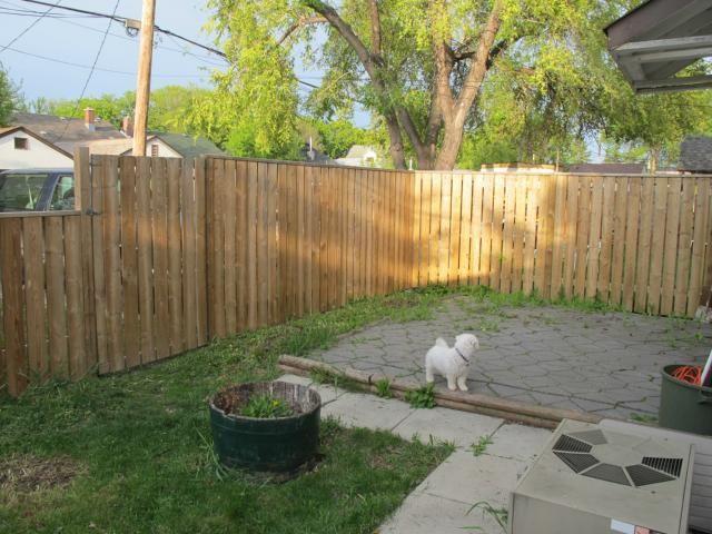 Photo 4: Photos:  in WINNIPEG: East Kildonan Residential for sale (North East Winnipeg)  : MLS®# 1210099